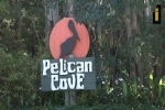 Pelican Cove Video